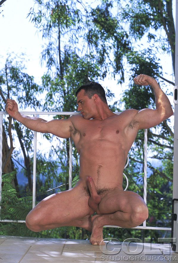 Apologise, dave angelo colt studio nude photos really. join