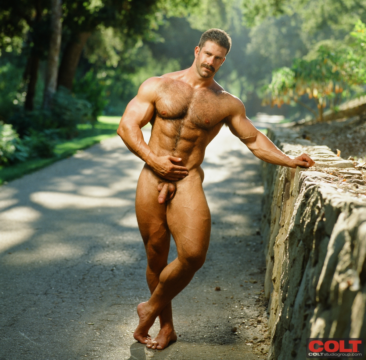 Gallery muscle nude