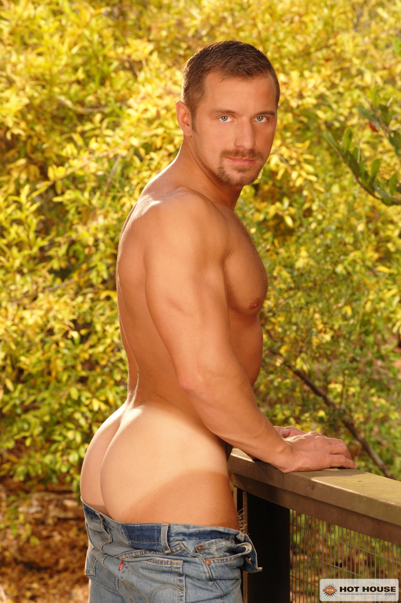 Free gay porn galleries. Gay sex photos and clips.