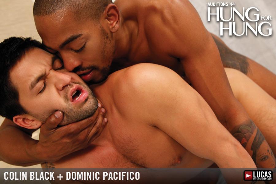 Gay black hot sex video 9