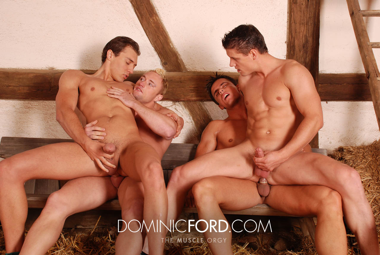 from Armando xxl gay orgy links