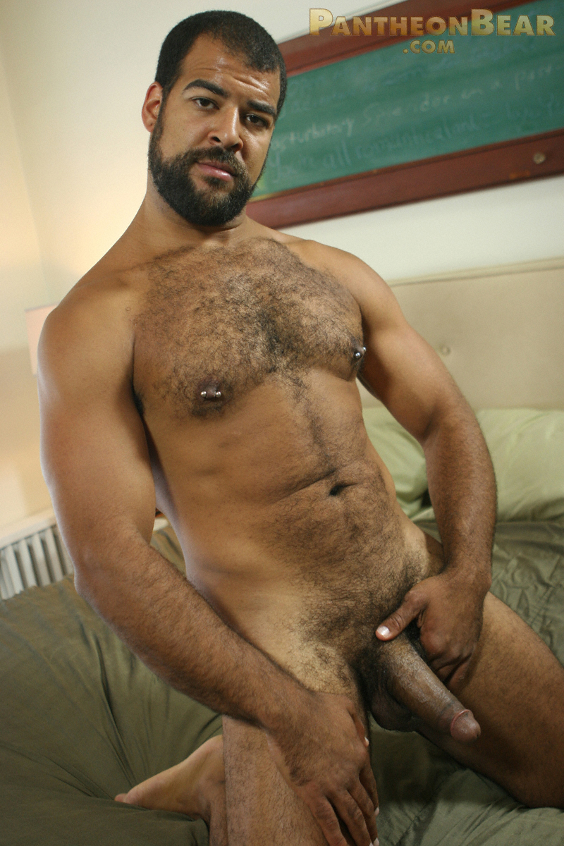 Hairy Bear Solo